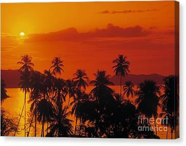 Tropical Beach Canvas Print by Juan  Silva