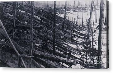 Tunguska Event, 1908 Canvas Print by Science Source