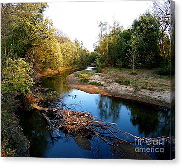 Twisted Creek Canvas Print by Sue Stefanowicz
