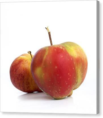 Apple Canvas Print - Two Apples. by Bernard Jaubert