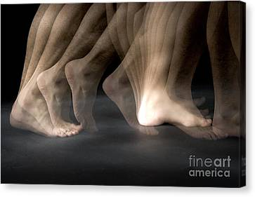 Walking Canvas Print by Ted Kinsman