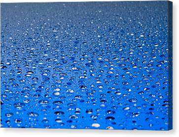 Water Drops On A Shiny Surface Canvas Print