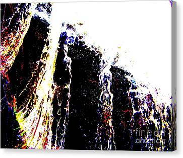 Water Falls Canvas Print by Rogerio Mariani