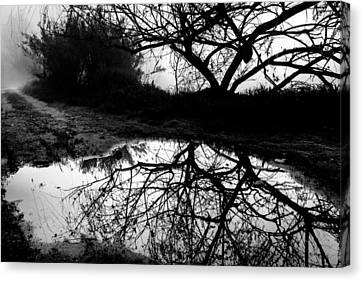 Canvas Print featuring the photograph Water Mirror by Edgar Laureano