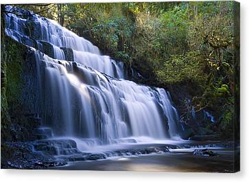 Waterfall Canvas Print by Ng Hock How