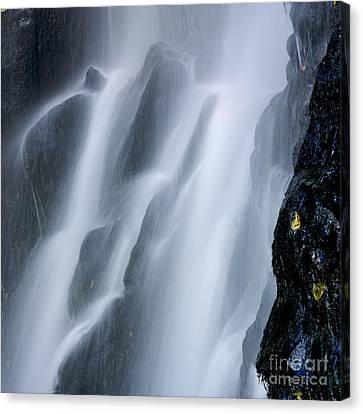 Waterfall Of Vaucoux. Puy De Dome. Auvergne. France Canvas Print by Bernard Jaubert