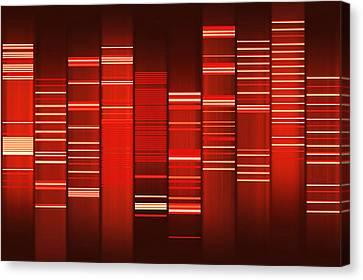 Website Source Code Visualisation Canvas Print by Web2dna-baekdal.com