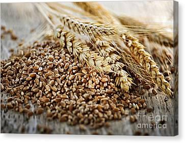 Wheat Ears And Grain Canvas Print by Elena Elisseeva