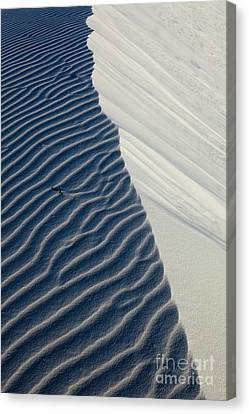 White Sands Canvas Print by Keith Kapple