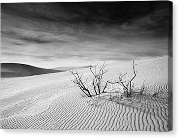 Canvas Print featuring the photograph White Sands by Mike Irwin