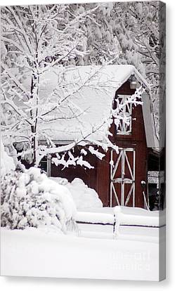 Winter Barn Canvas Print by Cheryl Cencich