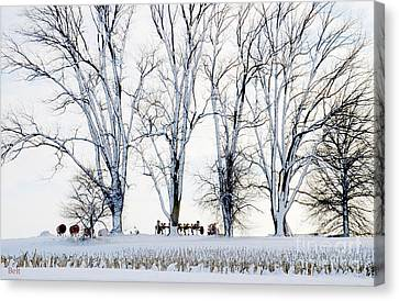 Winter Calm Canvas Print by Christine Belt