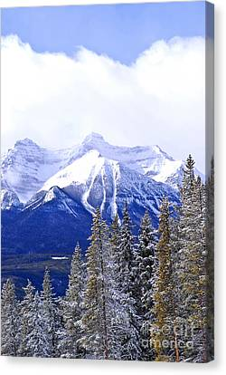 Winter Mountains Canvas Print by Elena Elisseeva