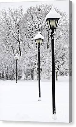 Winter Park Canvas Print by Elena Elisseeva