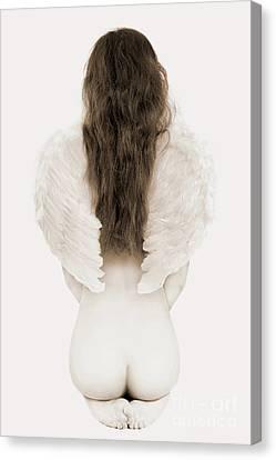 Metaphorical Canvas Print - Woman With Angel Wings by Oleksiy Maksymenko