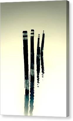 Wooden Piles Canvas Print by Joana Kruse