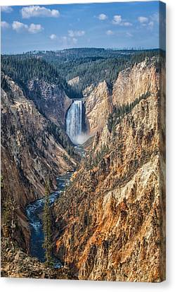 Yellowstone Lower Falls Canvas Print by Ronald Lutz