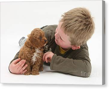 Young Boy With Cockerpoo Pup Canvas Print