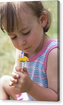Young Girl With A Flower Canvas Print by Ian Boddy