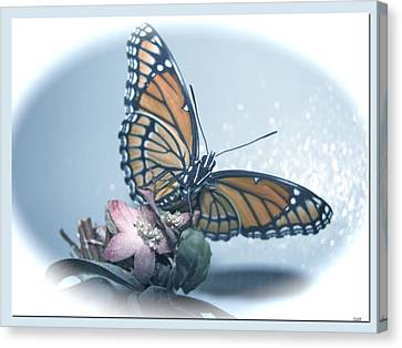 Butterfly Collection Design Canvas Print by Debra     Vatalaro