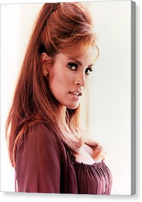 1960s Hairstyles Canvas Print - Raquel Welch, 1960s by Everett