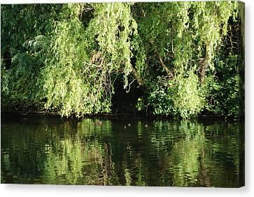 Canvas Print featuring the photograph St. James Park London by Harvey Barrison