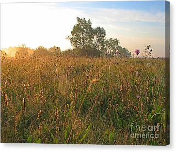 Landscape Canvas Print by Odon Czintos