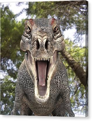 Tyrannosaurus Rex Dinosaur Canvas Print by Roger Harris