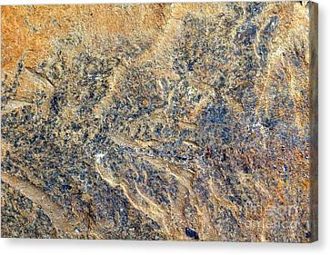 Natures Rock Art Canvas Print by Jack R Brock