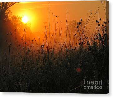Sunset Canvas Print by Odon Czintos