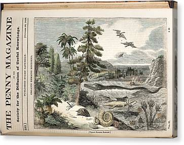 1833 Penny Magazine Extinct Animals Color Canvas Print by Paul D Stewart