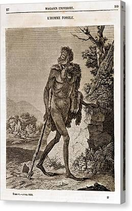 1838 Cave Man Engraving 'l'homme Fossile' Canvas Print by Paul D Stewart