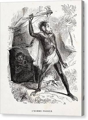 1861 Fossil Man By Boitard Canvas Print by Paul D Stewart