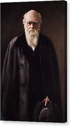 1881 Charles Darwin Portrait Aftr Collier Canvas Print by Paul D Stewart