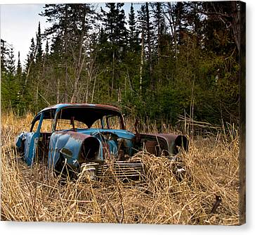 1956 Chevy Canvas Print by Cale Best