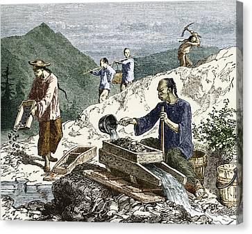19th-century Gold Mining, Australia Canvas Print