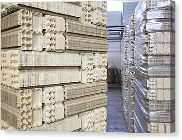 A Factory Floor A Processing Plant Canvas Print