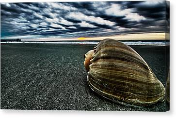 Art Of The Sea Canvas Print by Calvin Smith