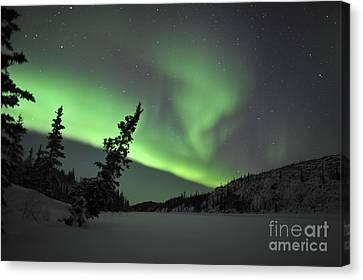 Aurora Borealis Over Vee Lake Canvas Print
