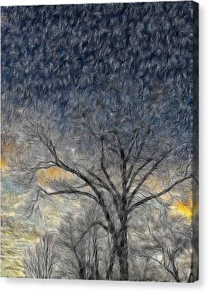 Bare Limbs Canvas Print by Misty Blankenship