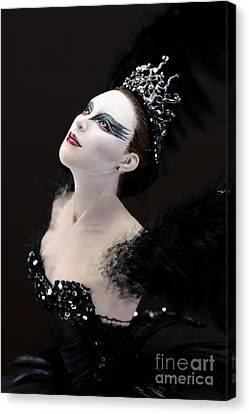 Black Swan Canvas Print by Vickie Arentz