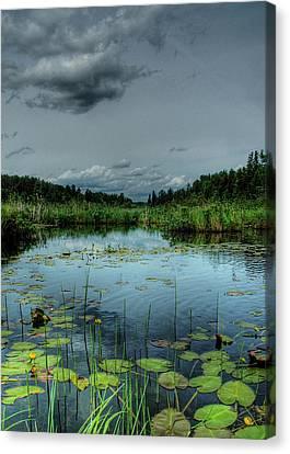 Bottomless Lake Canvas Print by Heather  Rivet