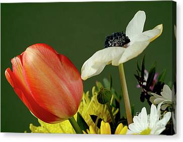 Bouquet Of Flowers Canvas Print by Sami Sarkis