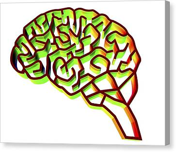 Brain Complexity, Conceptual Artwork Canvas Print