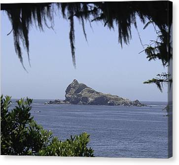 Canvas Print featuring the photograph Castle Rock by Betty Depee