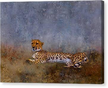 Cheetah Canvas Print by Ron Jones
