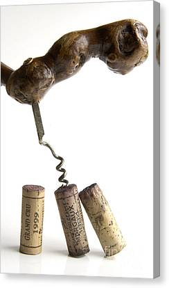 Corks Of French Wine. Canvas Print