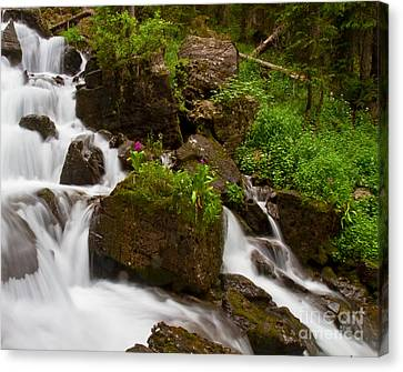 Crystal Cascades With Orbs Present Canvas Print by Crystal Garner