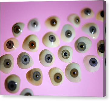 False Eyes Canvas Print by Lawrence Lawrynational Artificial Eye Service
