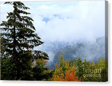 First Day Of Fall Canvas Print by Thomas R Fletcher